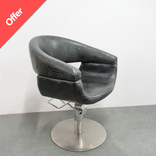 Salon Styling Chair Offers