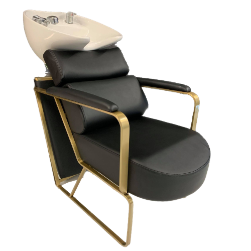 Black and Gold Collection Backwash Unit by SEC / PRE ORDER NOW
